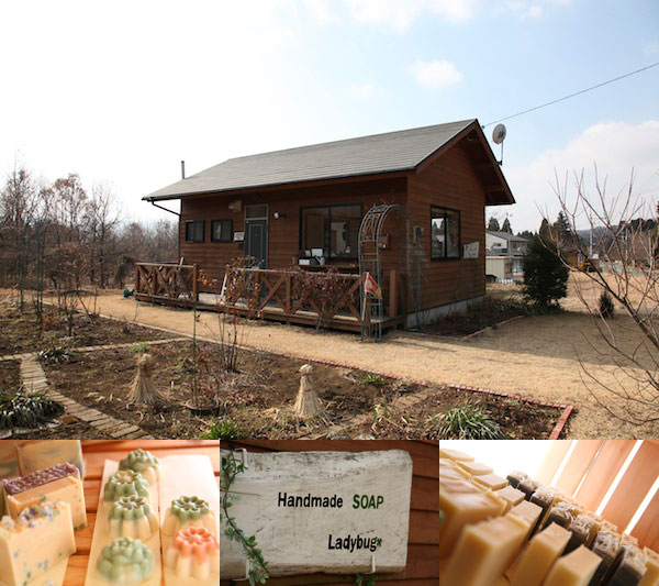 Handmade Soap Ladybug(豊田希さん)がロゼッタストーン参加決定!!