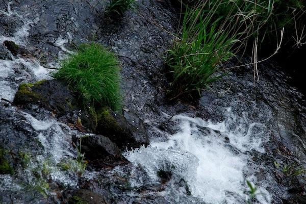 水に感謝、熊本県。