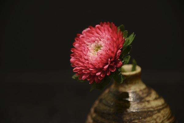 花(FLOWER)